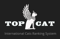 top cat black